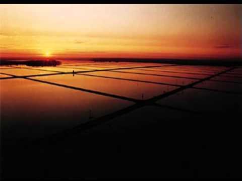 farm-raised salmon aquasystem