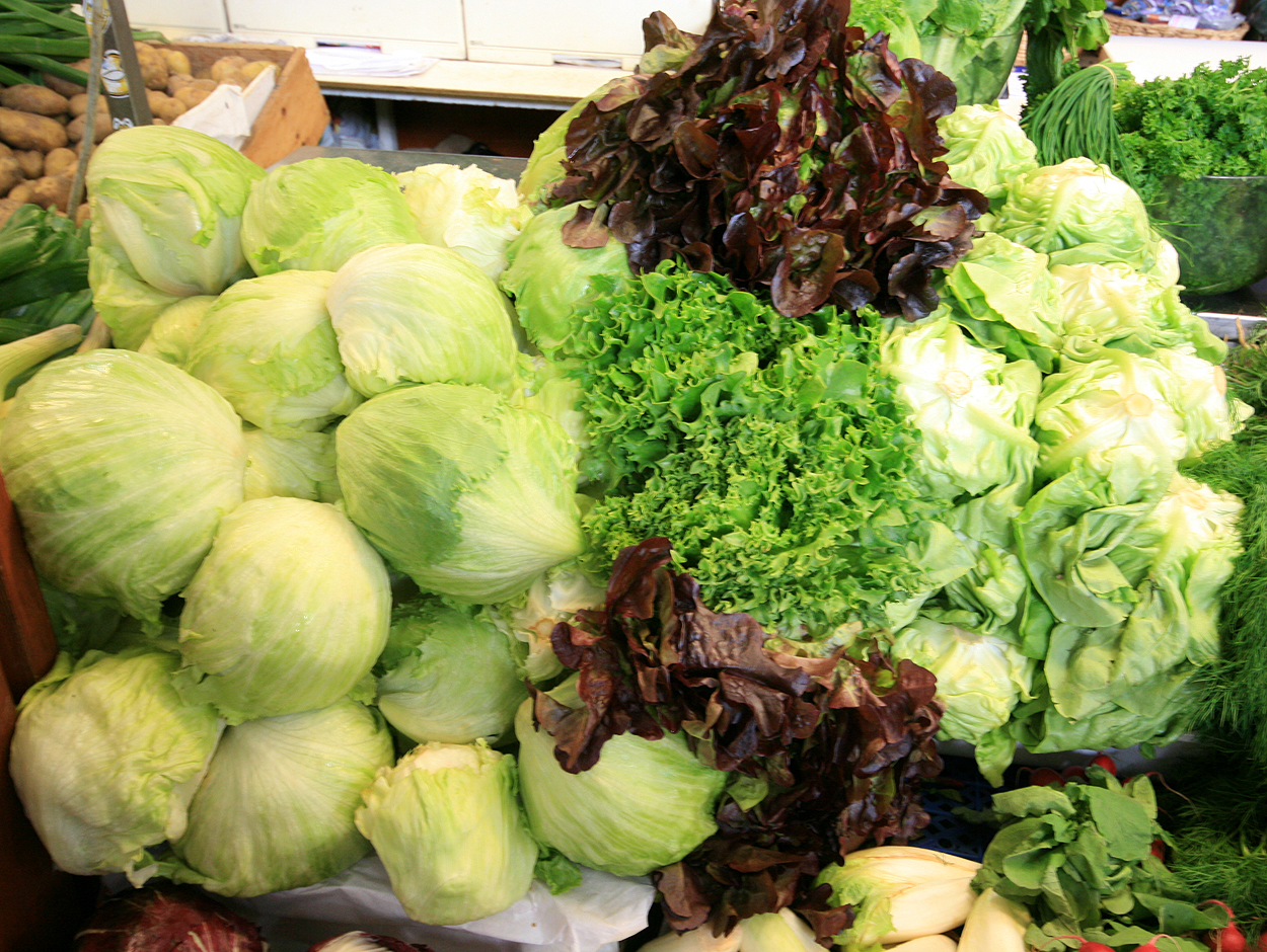 lettuce varieties - how to make a grocery list