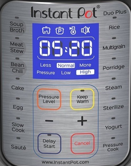 Instant Pot Duo Plus Control Panel