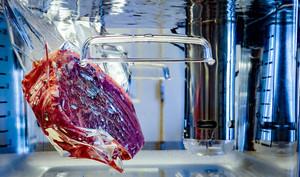 Steak in Sous Vide Bath