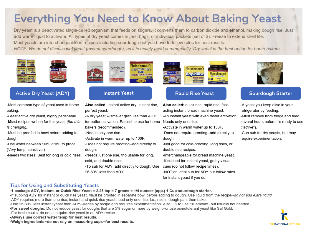 Baking Yeast Infographic